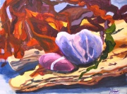 Pebbles and Bladderwrack by Melissa Cotter