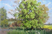 The Chestnut Tree, Spring by Angus Rands
