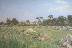 Corn Stooks by Angus Rands